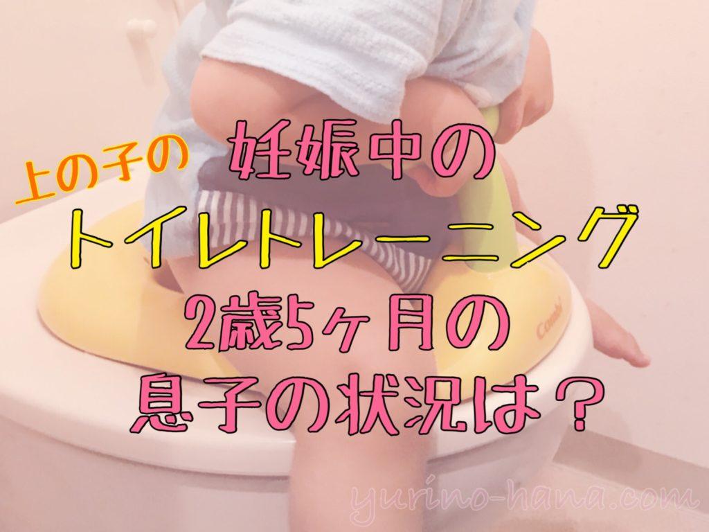 妊娠中の上の子のトイレトレーニング… 2歳5ヶ月の息子のトイ ...
